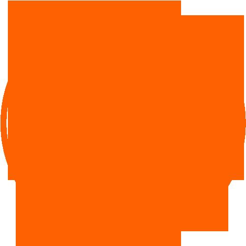 100th wordpress theme
