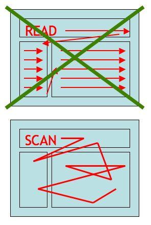 reading-scanning